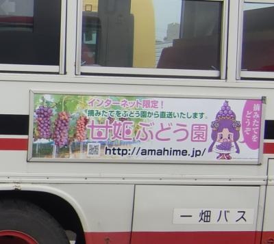 amahimego001